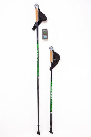 Палки для скандинавской ходьбы Finpole NOVA 30% Carbon Green