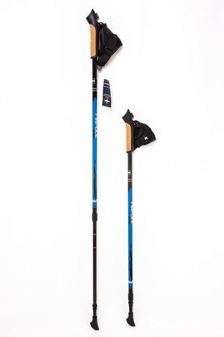 Палки для скандинавской ходьбы Finpole  Alpina 60% Carbon